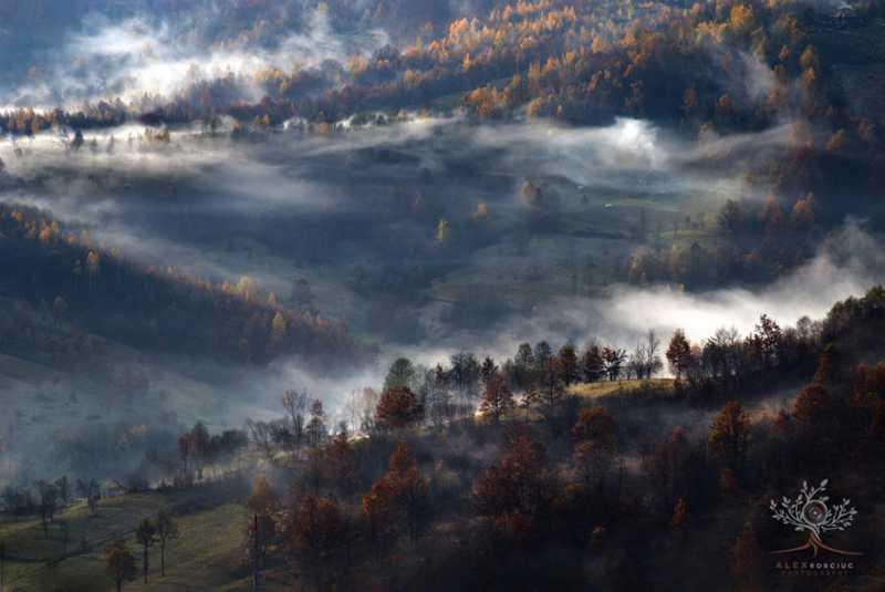201503_transilvania2.jpg