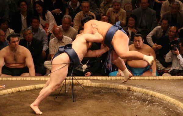 201511_sumo_1.jpg