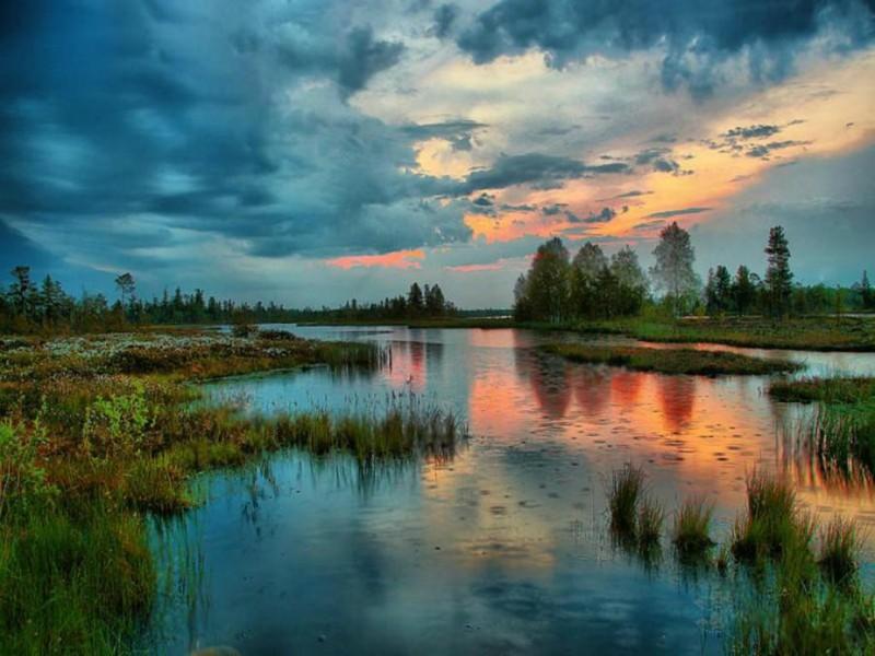 201607_vasjugan_swamp_3.jpg