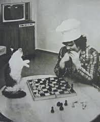 Kuklachev_kolpak_cat_chess.jpg