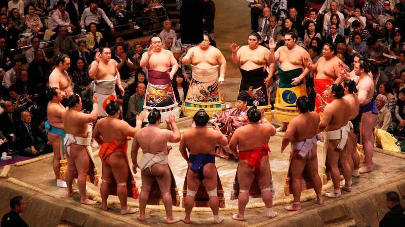 201511_sumo_0.jpg
