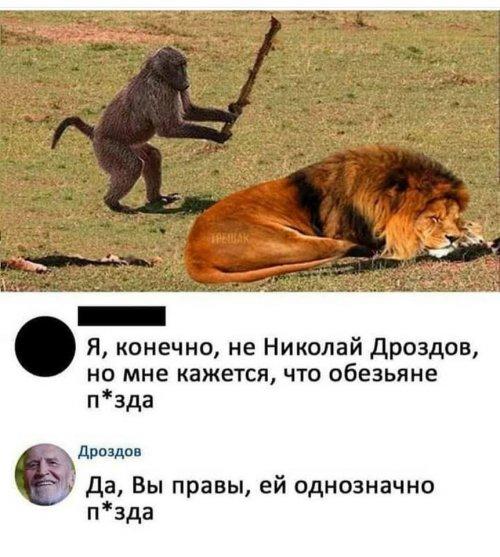 201904_1554563020_prikol-3.jpg