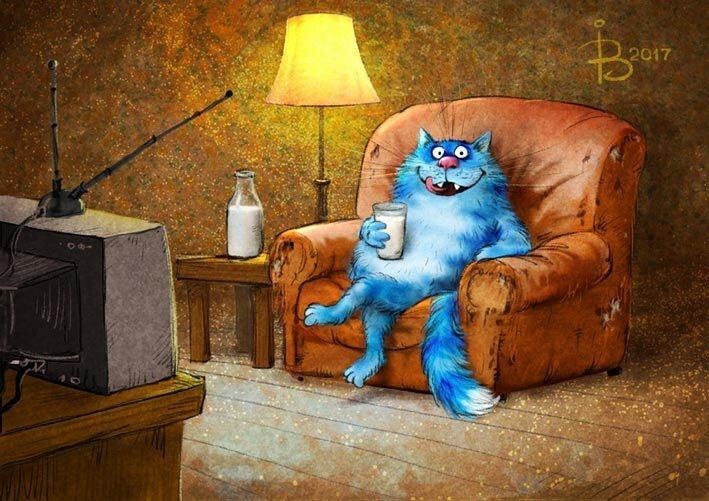 2020_cat_1.jpg