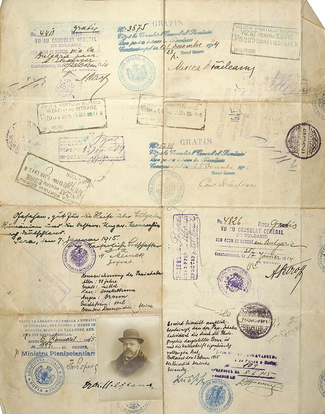 2021_passport_parvus_126-229-3495-1-VA106484.jpg