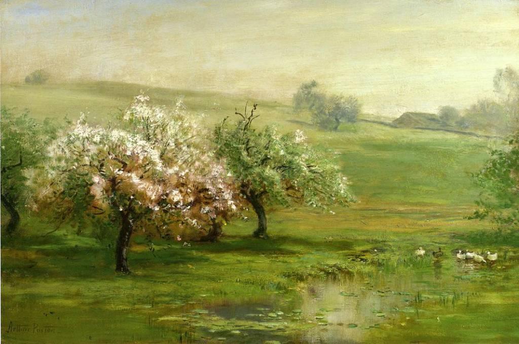BlossomingTrees.jpg