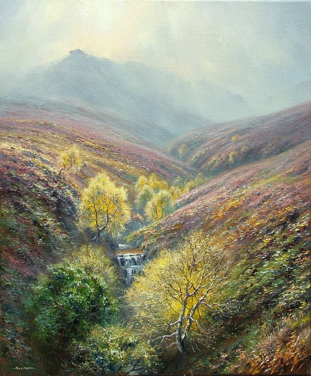 autumn_in_fairbrook_derbyshire.jpg