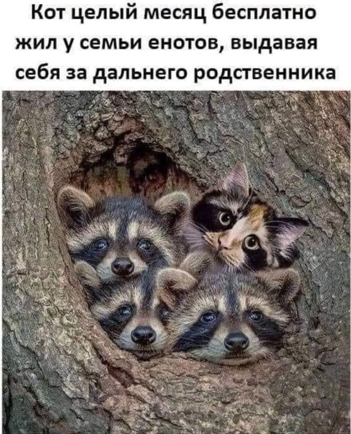 FB_IMG_1611557030865.jpg